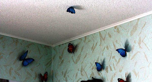 декор бабочки на стене фото 7